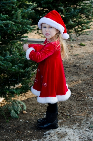 disgruntled: disgruntled little elf says what  I m getting coal for christmas  Stock Photo