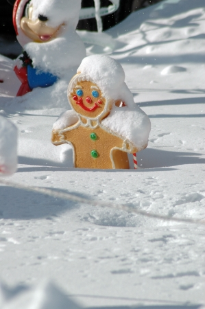 gingerbread man: gingerbread man in snow Stock Photo