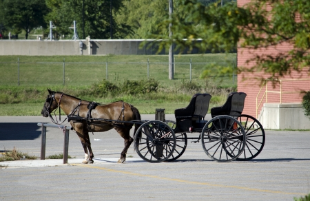 amish buggy: horse and buggy in modern time Stock Photo