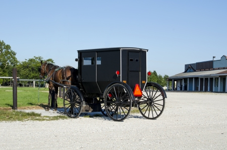 amish buggy: Amish horse and buggy parked