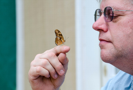 fingertip: a man gets up close as he holds a tiny butterfly