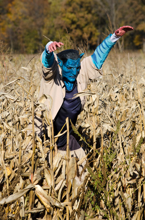a blue scary scarecrow in a field of corn and a haunted corn maze Banco de Imagens
