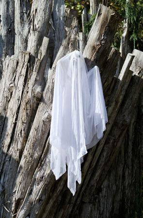 ghost Halloween decoratie
