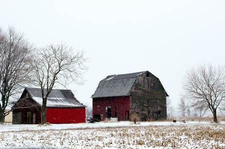 barns winter: these tired old barns still stand in a cold mcihgian winter
