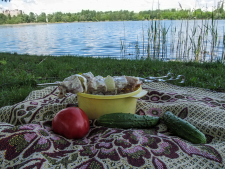 Picnic on the shore of the pond. Meat on skewers and vegetables lies on the coverlet on the grass