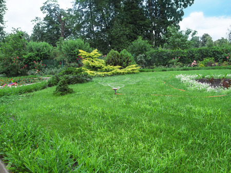 The sprayer irrigates the green juicy grass in the garden or park. Irrigation Sprinkler Watering is set on the lawn in a beautiful flower garden Banco de Imagens