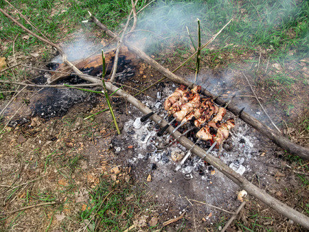 Seven skewers with meat lie on logs over charcoals among the green grass. The concept of survival in the wild, cooking meat during camping Stok Fotoğraf