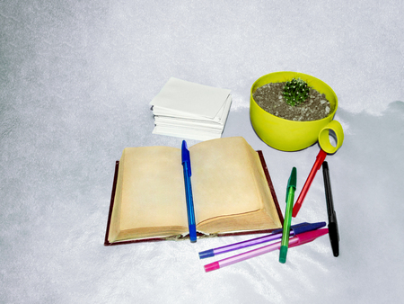 An old book with yellowed pages, multi-colored pens, a stack of white paper and cactus. The concept of teaching, literature, keeping a diary. Objects isolated on a light background Stok Fotoğraf