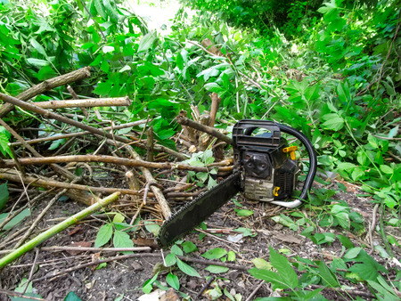 The chainsaw lies on the ground among cut branches of a bush with green foliage. The concept of territory improvement, pruning of branches, cutting of trees and bushes