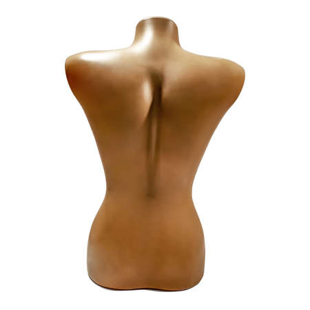 Brown Female Torso mannequin - back view, isolated on white background. Plastic female body in studio, close-up