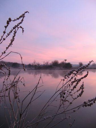 dawns: foggy morning