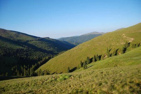 fagaras: valle con gli alberi adatti, Fagaras montagne, i Carpazi