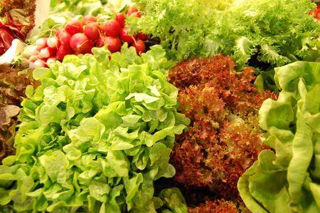 salads photo