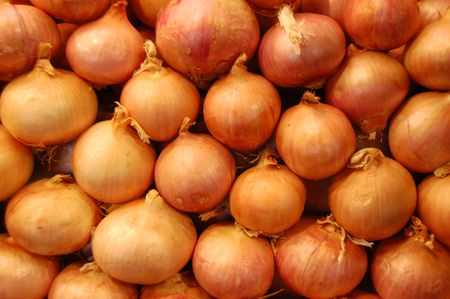onions arranged in order photo