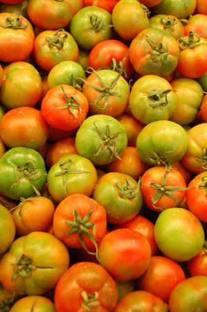 green tomatoes photo