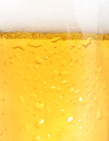 barley head: Close up of backlit glass of beer
