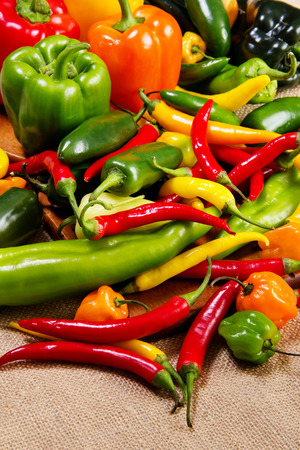 Stock image of chilli pepper still life very colorful an varied