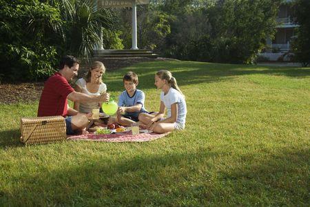 Caucasian family of four having picnic in park.