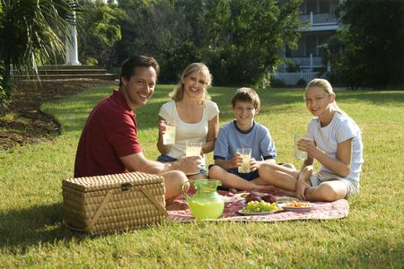 picnic park: Caucasian family of four having picnic in park. Stock Photo