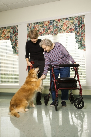 canines: Elderly Caucasian woman using walker and middle-aged daugher petting dog in hallway of retirement community center.