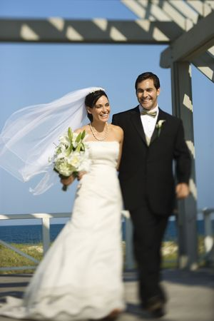 Bride and groom walking. Stock Photo - 1806689