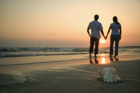 husbands: Back view of mid-adult couple holding hands walking on beach with seashell in foreground.
