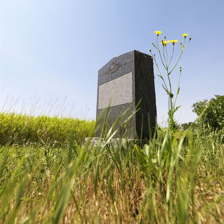 grave site: Marble headstone in rural field under blue sky. Stock Photo