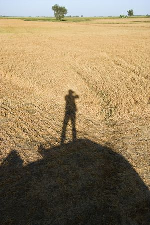 cropland: Shadow of figure standing on farm equipment overlooking harvested cropland. Stock Photo