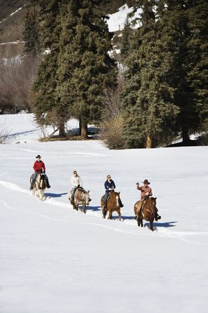 Four people horseback riding in snow covered landscape in Colorado, USA. Stock Photo