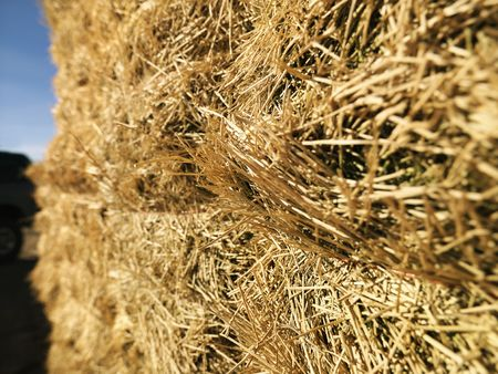 Close up shot of bale of hay. photo