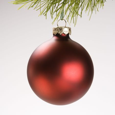 Still life of red Christmas ornament hanging from pine branch. photo