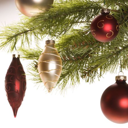 Still life of red and gold Christmas ornaments hanging from pine branch. Stock Photo - 1906592