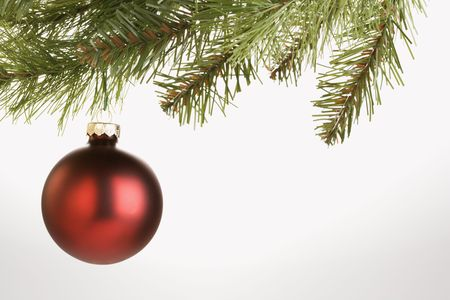 Still life of round red Christmas ornament hanging from pine branch. photo