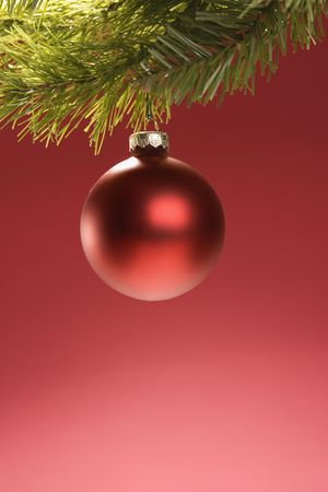 Still life of round red Christmas ornament hanging from pine branch. Stock Photo - 1906740