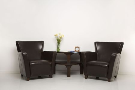 Two brown armchairs and table with daffofils still life. Stock Photo - 1934046
