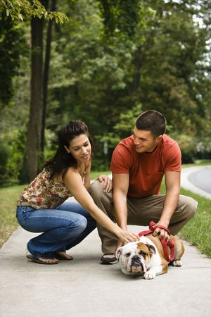 mid adult couple: Caucasian mid adult couple petting English Bulldog on sidewalk. Stock Photo
