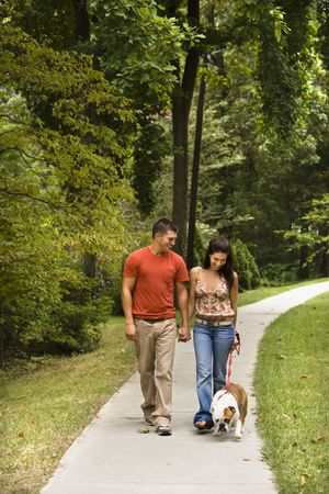 outdoor walking: Caucasian mid adult couple walking English Bulldog in park.