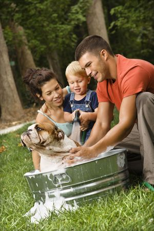 Caucasian family with toddler son giving  English Bulldog a bath outdoors. Stock Photo - 1964095