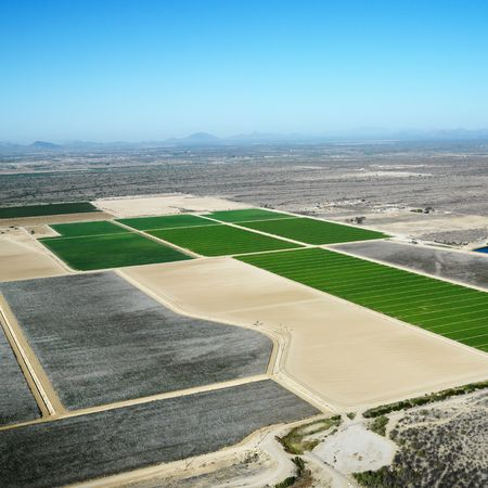 cropland: Aerial view of agricultural cropland in Arizona.