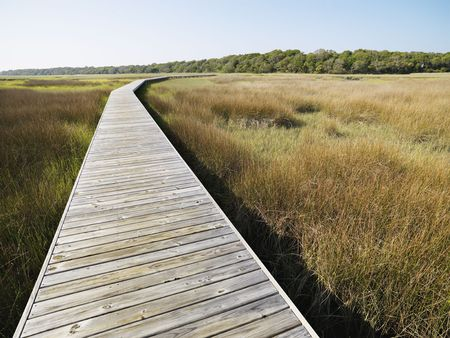 bald head: Wooden boardwalk stretching over marsh at Bald Head Island, North Carolina. Stock Photo