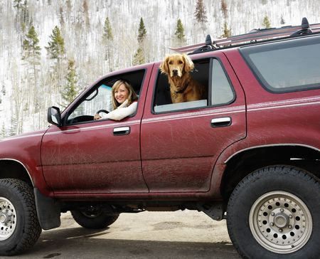 dirt road recreation: Woman and dog in dirt splattered SUV looking out windows in snowy countryside. Stock Photo