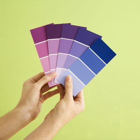 Caucasian female hands holding paint color samples. Stock Photo - 2043855