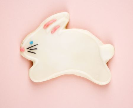 Sugar cookie shaped like rabbit with decorative icing. photo
