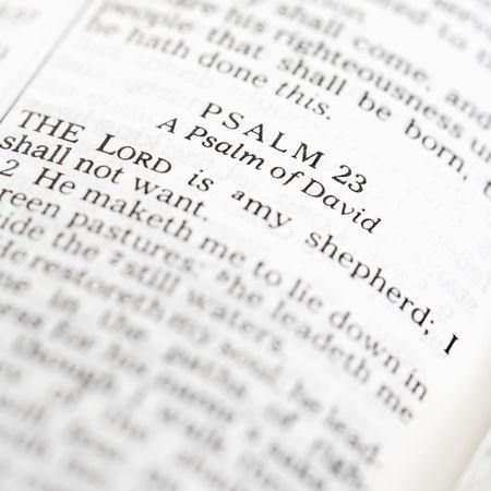 salmo: Messa a fuoco selettiva del Salmo versi in aperto Sacra Bibbia.