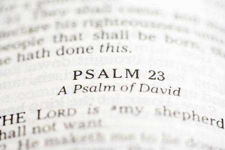 salmo: Selettiva si concentrano versetti del Salmo in aperta Sacra Bibbia.  Archivio Fotografico