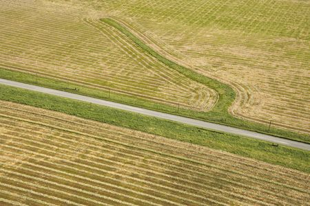 cropland: Aerial of rows in agricultural cropland.
