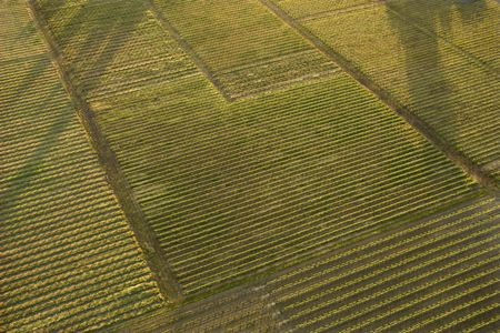 cropland: Aerial of agricultural cropland. Stock Photo