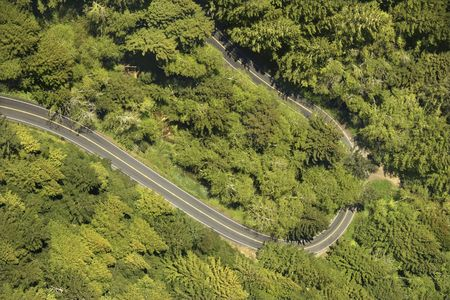 curve road: Aerial of winding scenic highway with trees in rural California, USA.