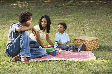 healthiness: Smiling happy parents and son having picnic in park. Stock Photo