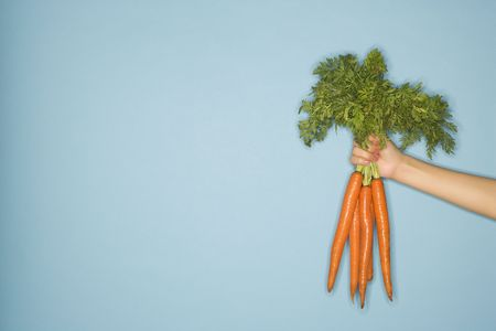 Caucasian woman arm holding out fresh bunch of carrots against blue background. photo